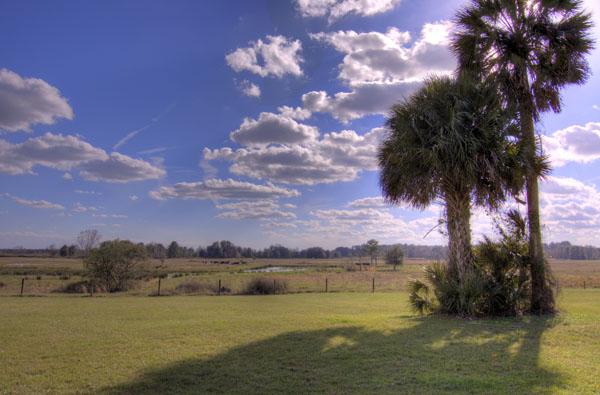 Paines Prairie View from Savannah Pointe SW Gainesville