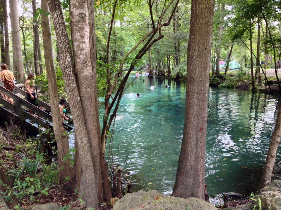 Ginnie Springs Park on the Santa Fe River