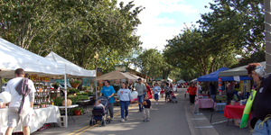 77th Annual Alachua Harvest Fest