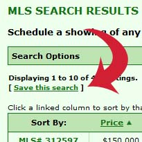 Save Search Terms VIP Search