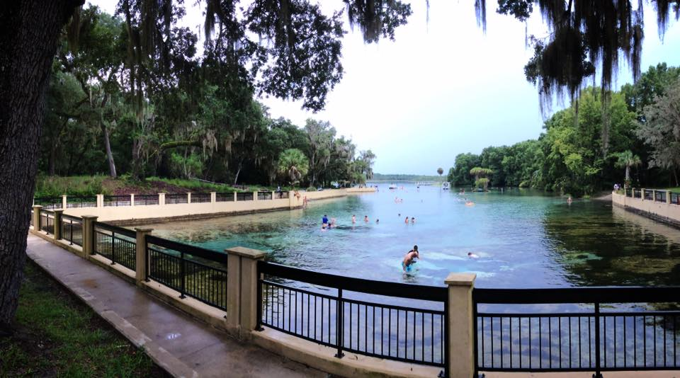 Cool off – Swimming at Salt Springs Park